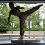 岡田准一は何種類もの格闘技で師範レベル!その鍛えた現在の筋肉もすごいレベル!