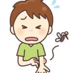 家の中での虫刺され:犯人はダニかそれとも!?こんな症状です。(閲覧注意)